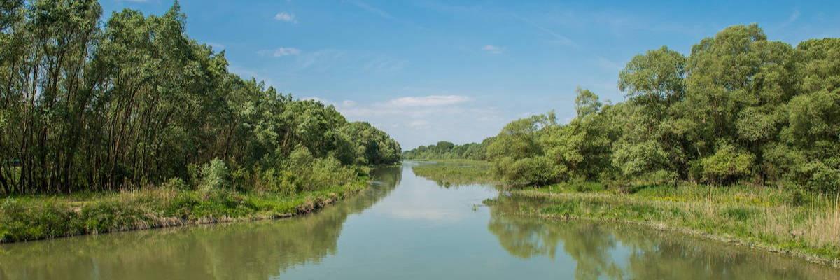 Wetland floodplains of the Danube in Slovakia