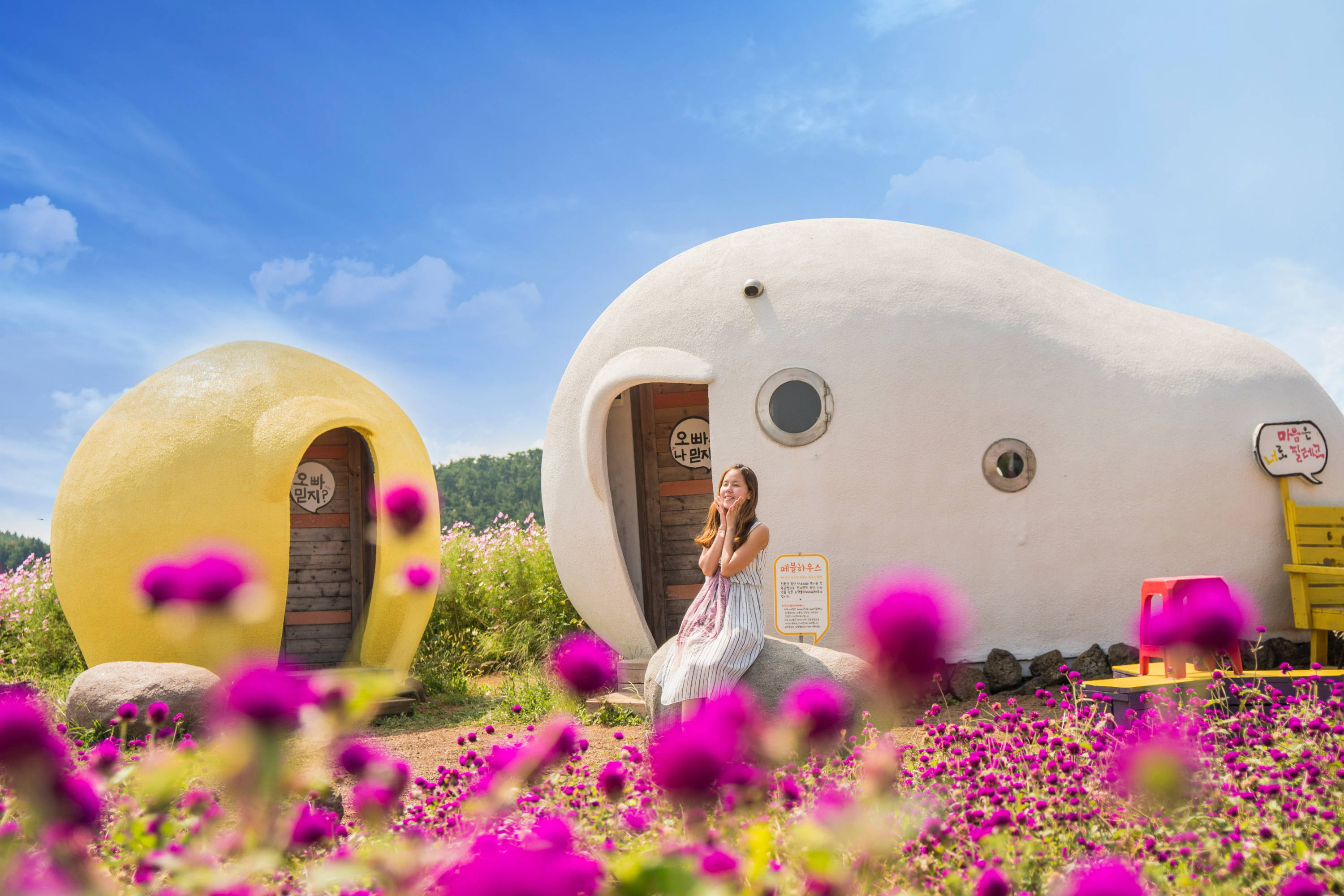 12 Best And Must-Try Things To Do On Jeju Island