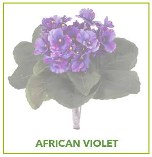 ARTIFICIAL African violet PLANTS