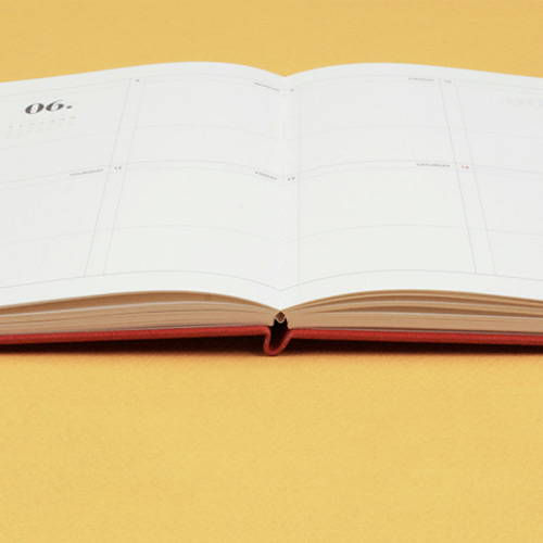 Opens flat - After The Rain 2020 Dot your day weekly dated diary planner