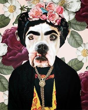 Frida Khalo pitbull