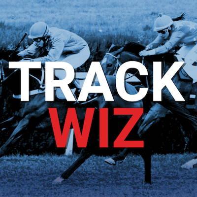 trackwiz, horse, horse racing, breeders cup, app store