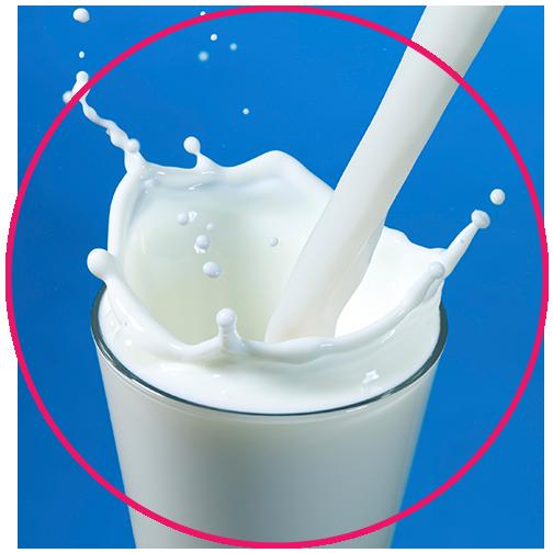 Milk Protein