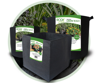 Get to know how to use of our Ecogardener grow bags.