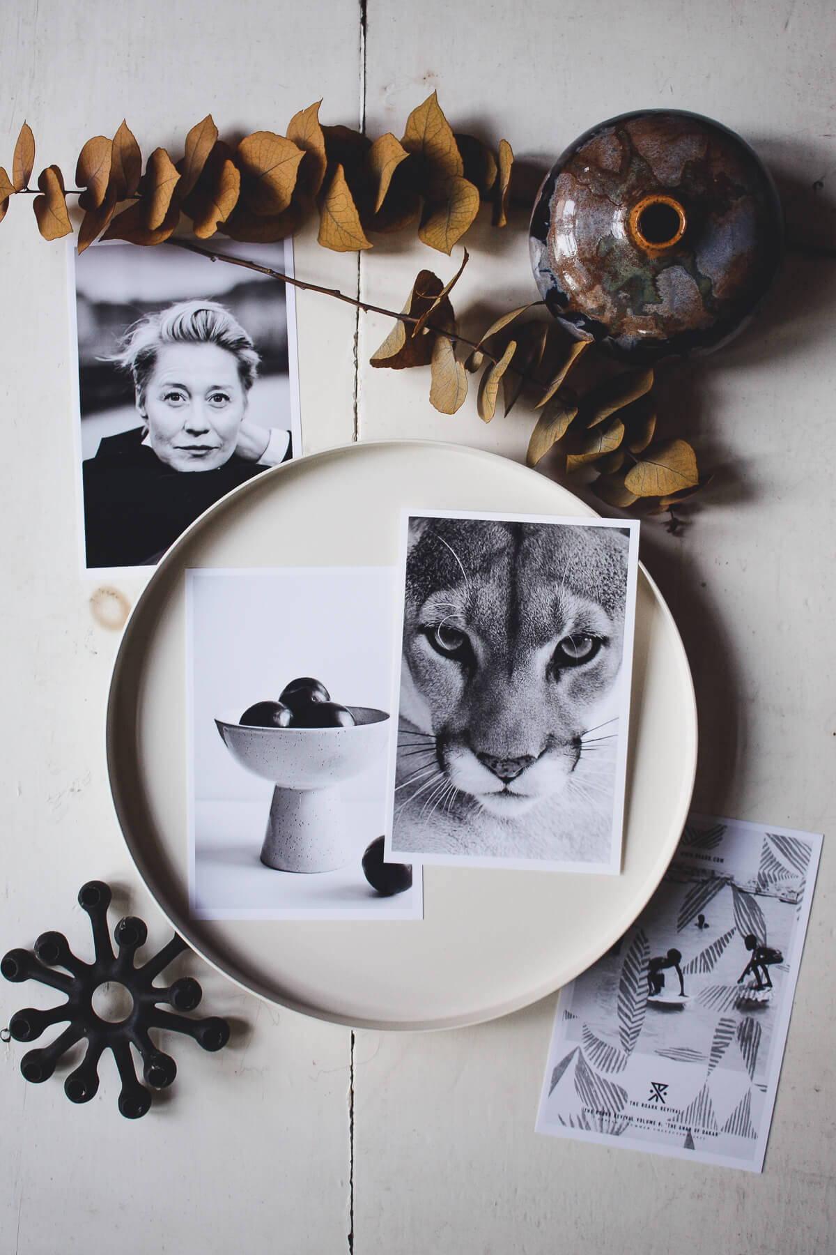 Sellerie Pinterest Moods