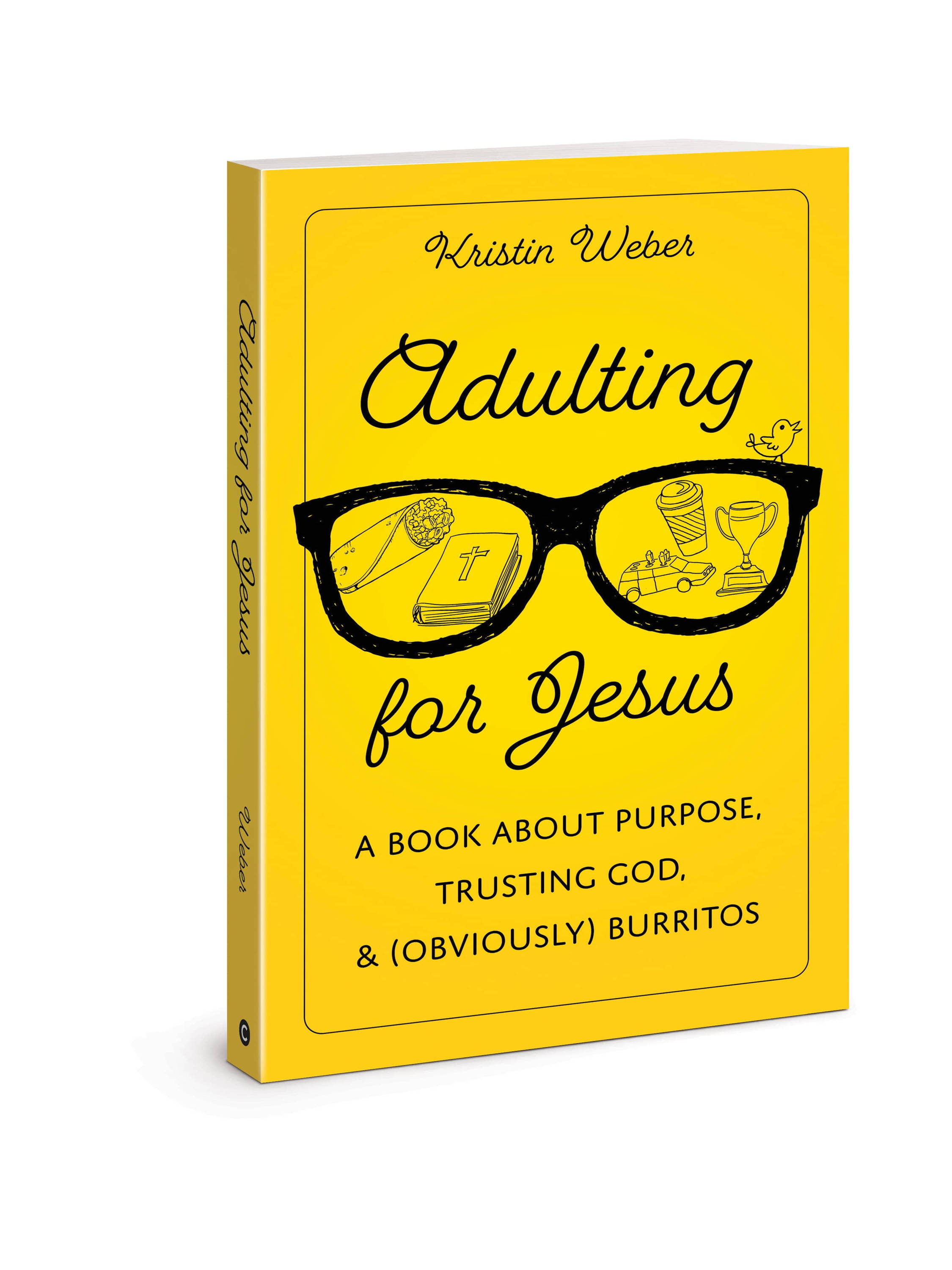 New funny christian book for Milenials and young adults Adulting for jesus