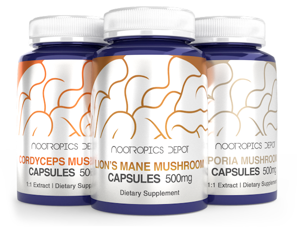 Mushroom Extracts Buying Guide by Nootropics Depothroom