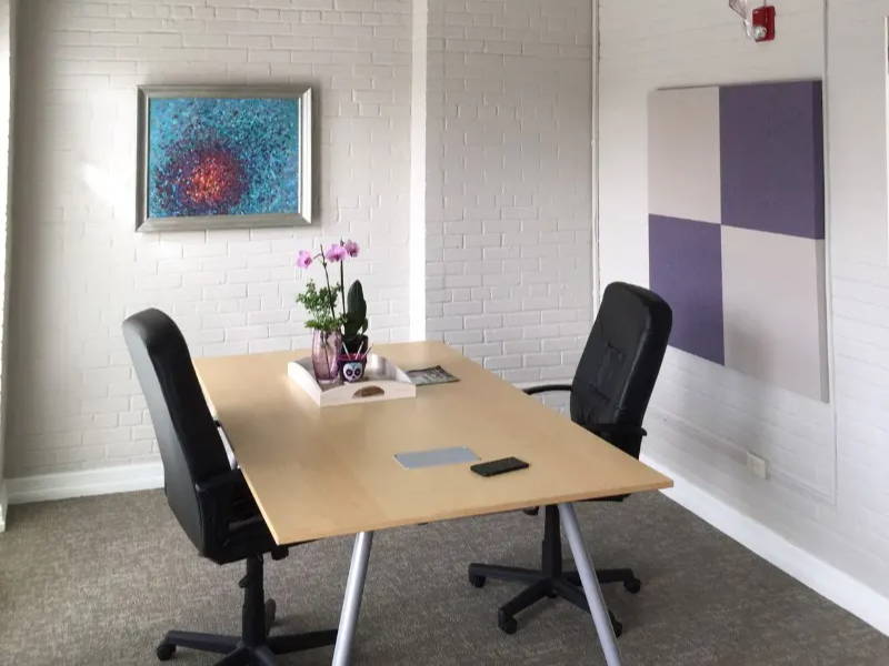 home office with acoustic panels