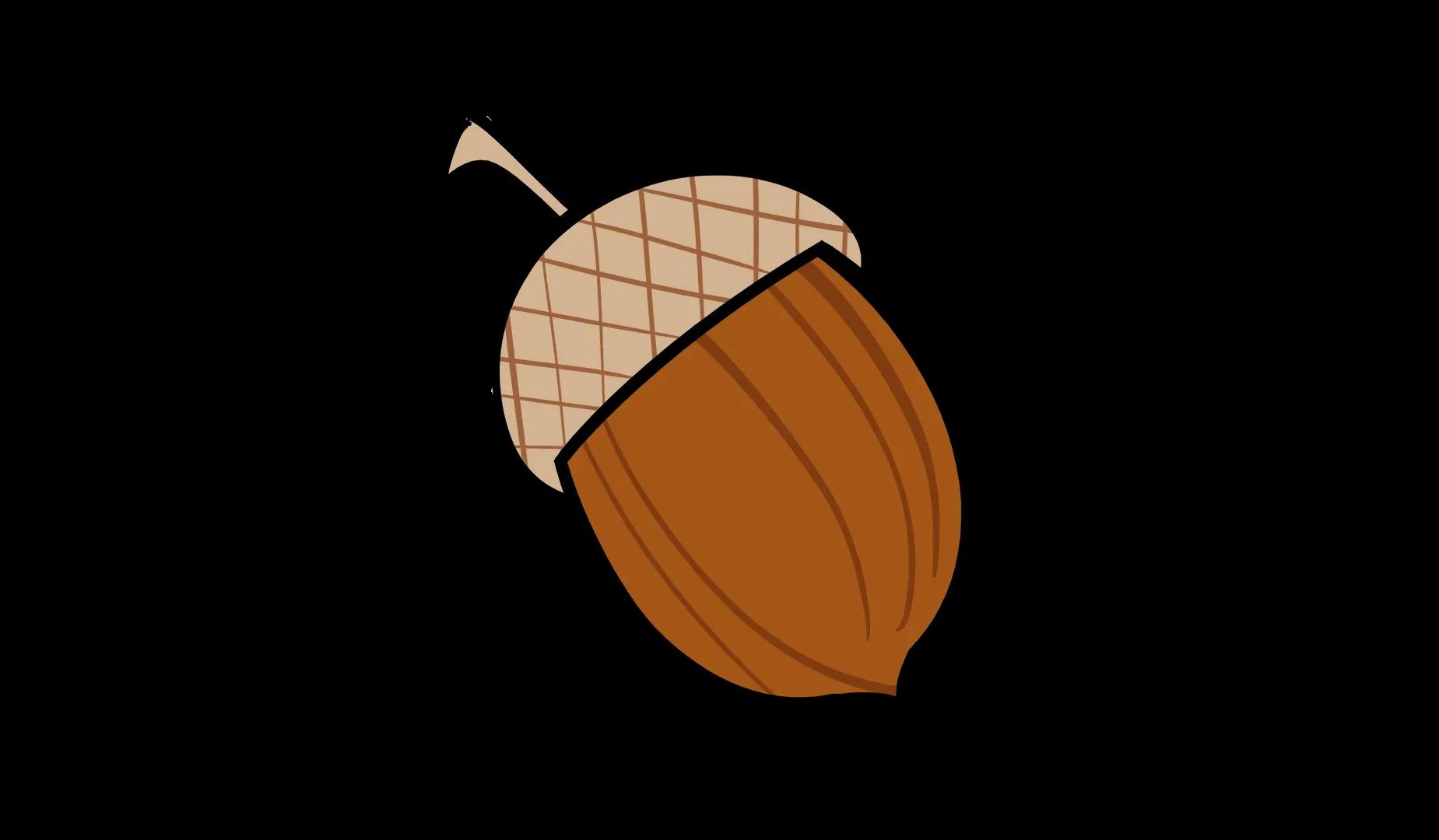 Illustrated acorn