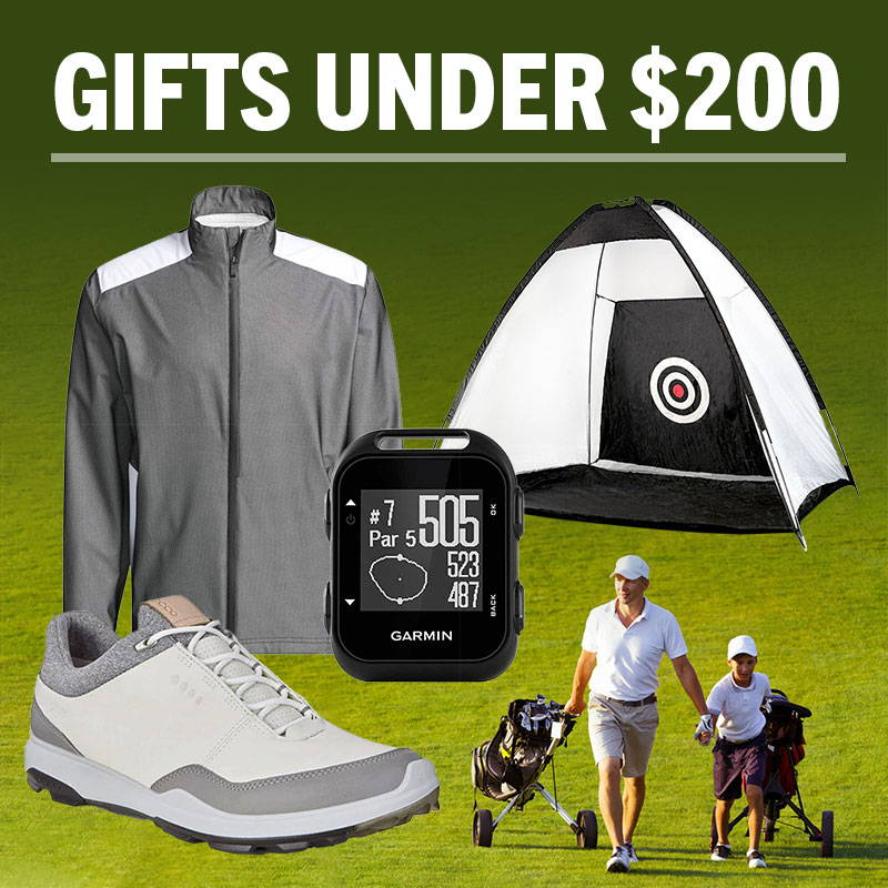 Fathers Day Gifts Under $200