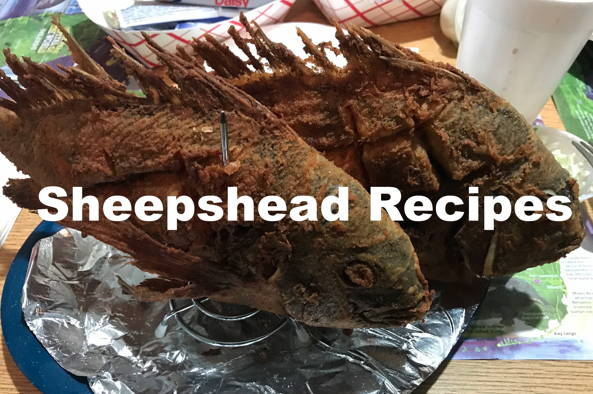 Sheepshead Recipes