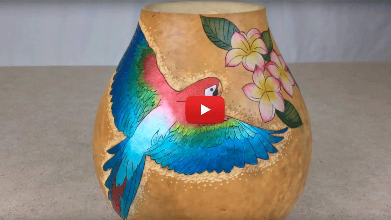 Watch Video 2-