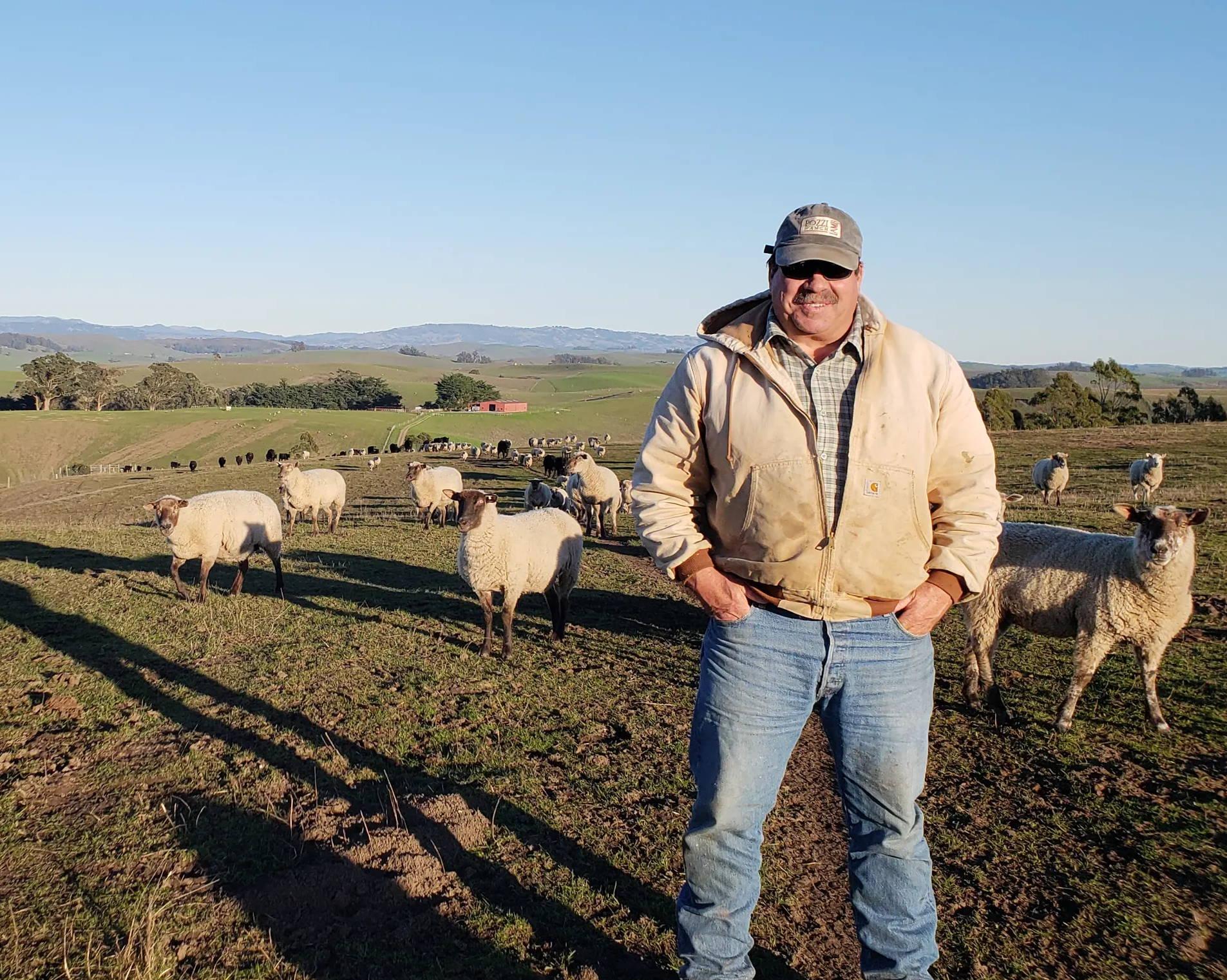Joe Pozzi on Pozzi Ranch for Sonoma Wool Company