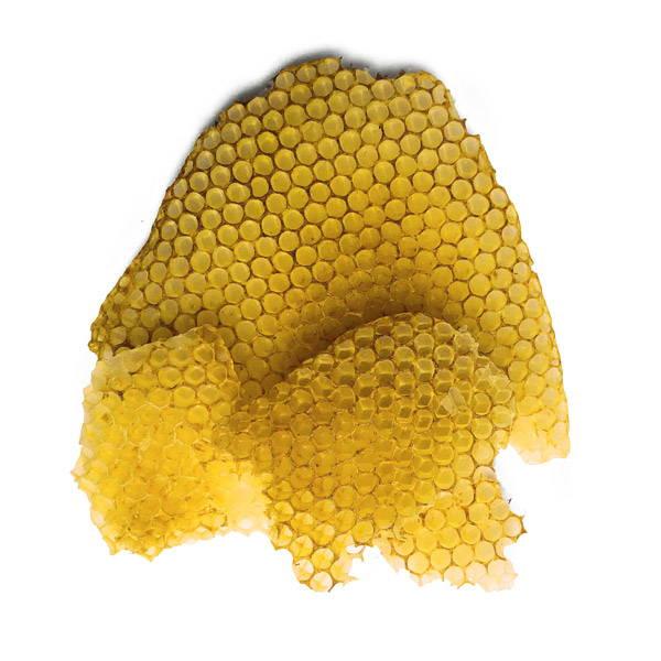 PureBee honeycomb made from beeswax