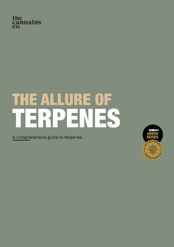 The Allure of Terpenes: A comprehensive guide to terpenes