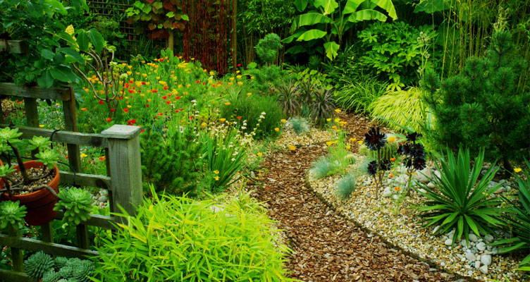 Une petite allée sinueuse jusqu'au fond du jardin lui donnera de la profondeur. Votre jardin paraîtra plus grand!