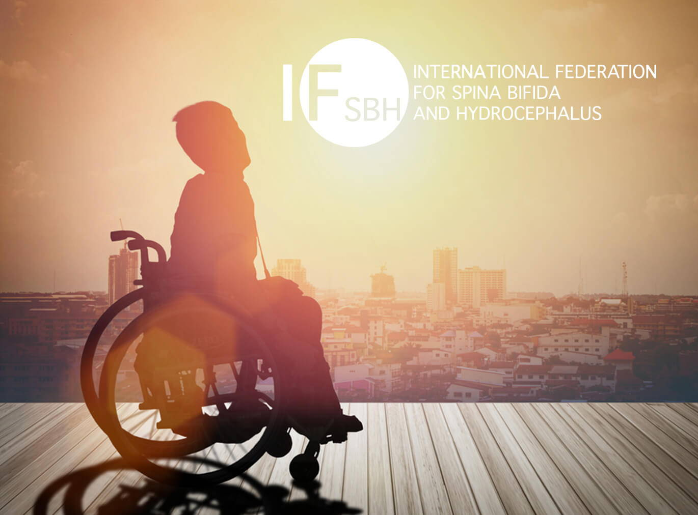 Person In A Wheelchair Looking At A Skyline