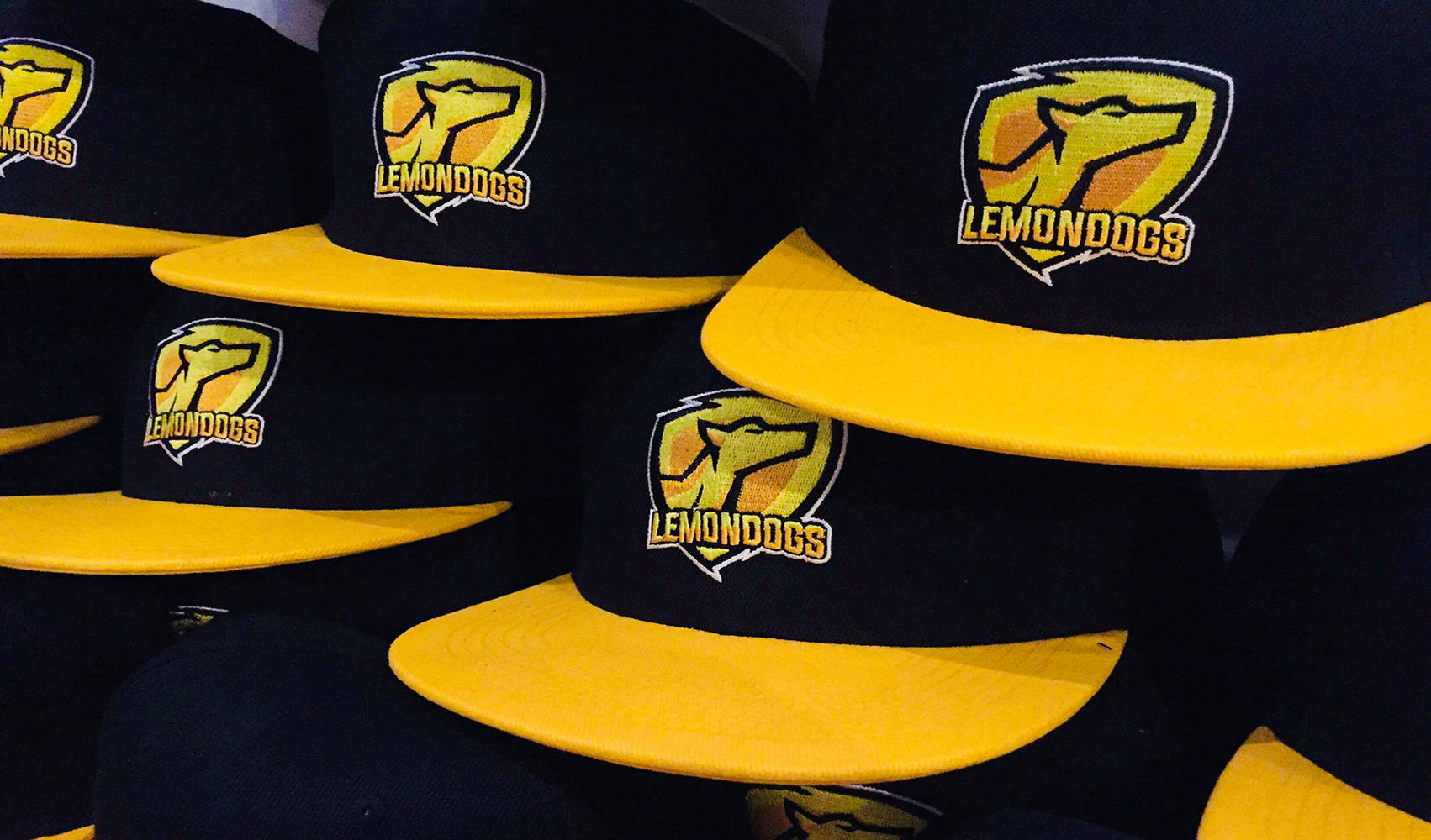 Custom Snapback Gaming Esports