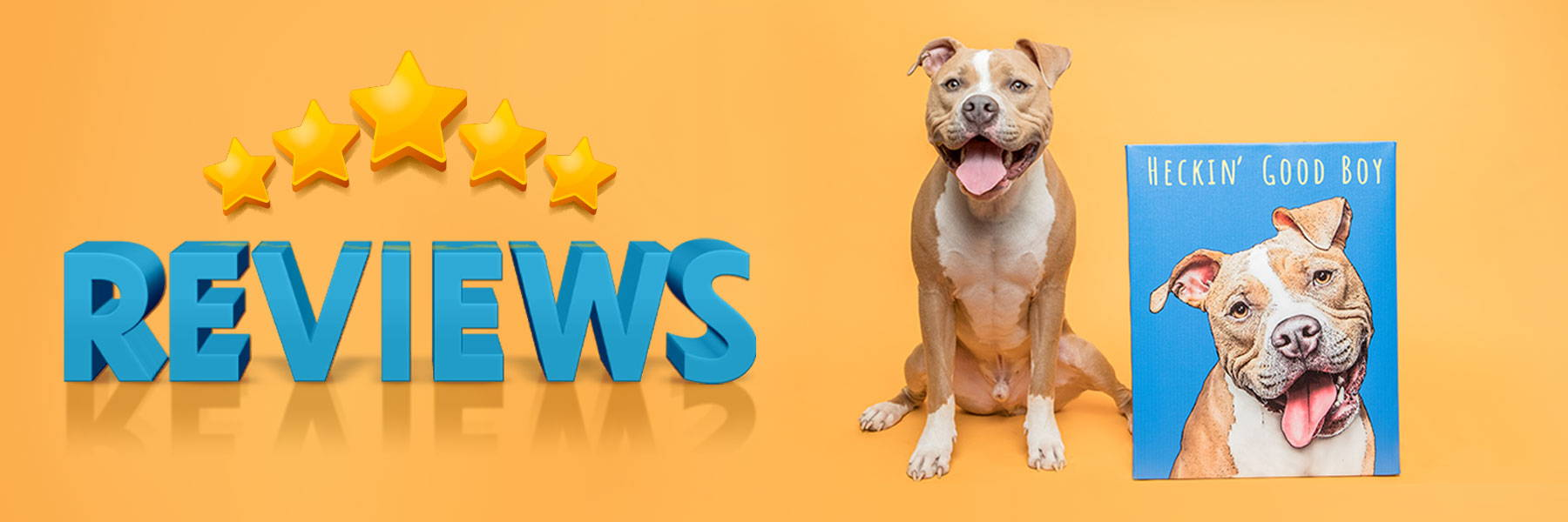 pop your pup reviews banner image pitbull