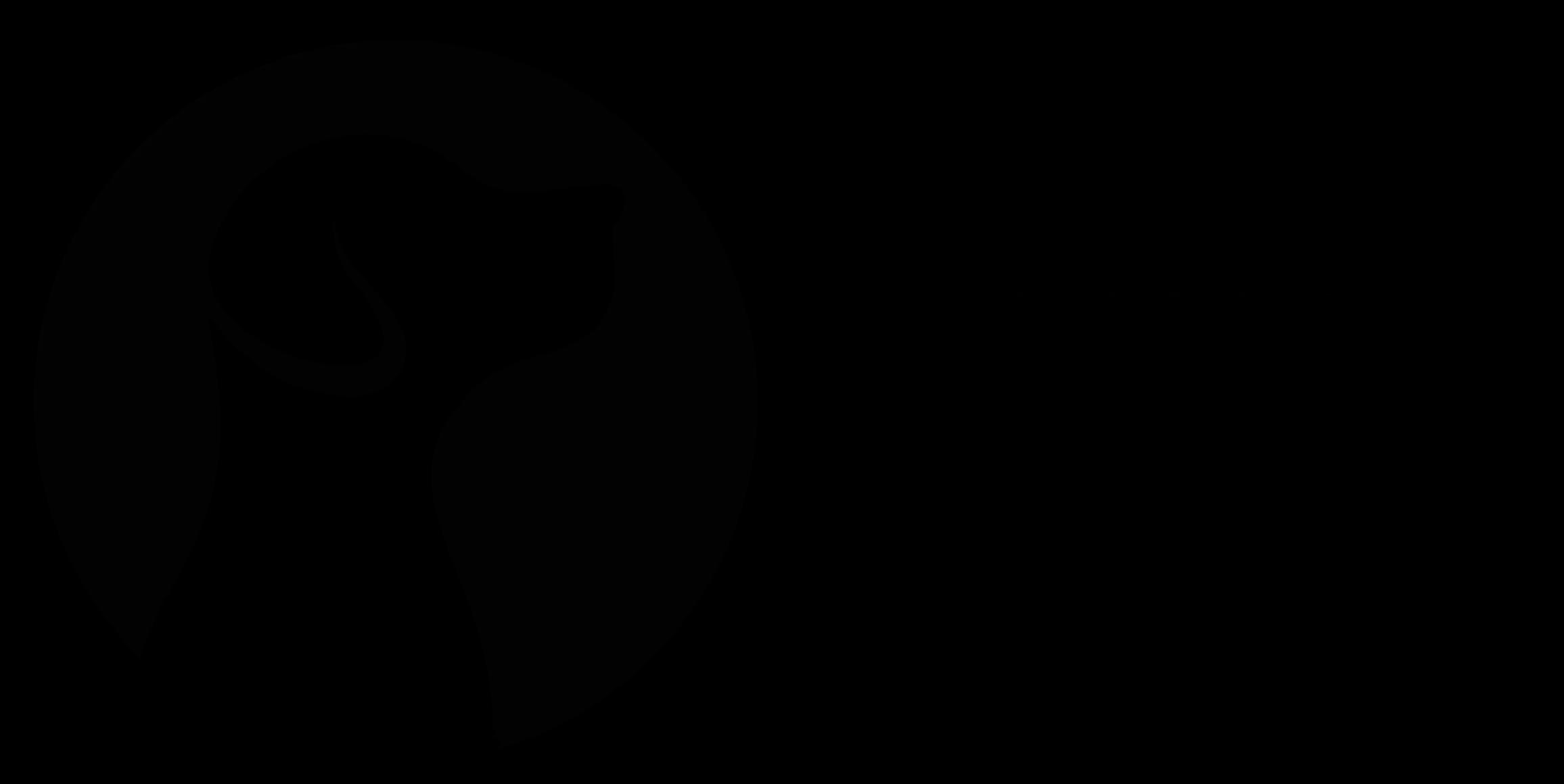 Super Portrait logo