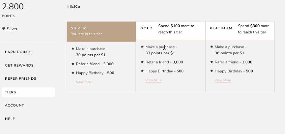 Loyalty Lion - Loyalty Program Tiers Example