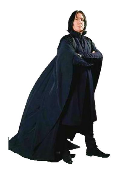Snape's Wand