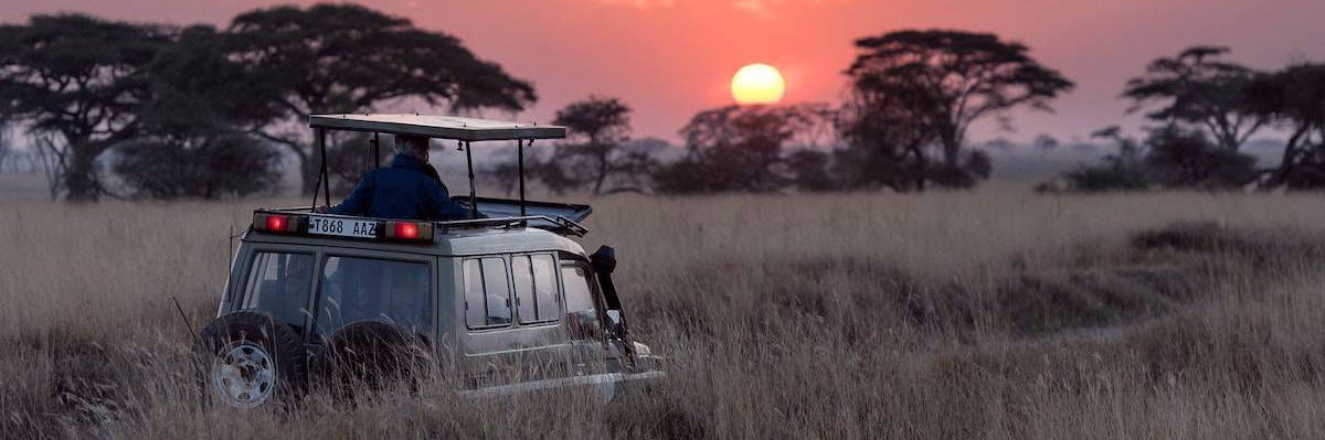 A 4x4 taking tourists on a nature based tourism safari in Africa.