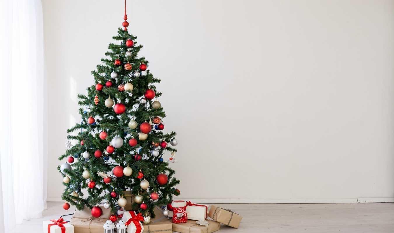 Meilleures idées cadeaux Noël écolo - Trust Society