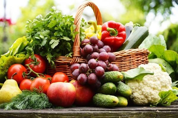 armflora stärken durch die Ernährung