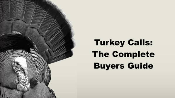 Turkey Calls: Complete Buyers Guide