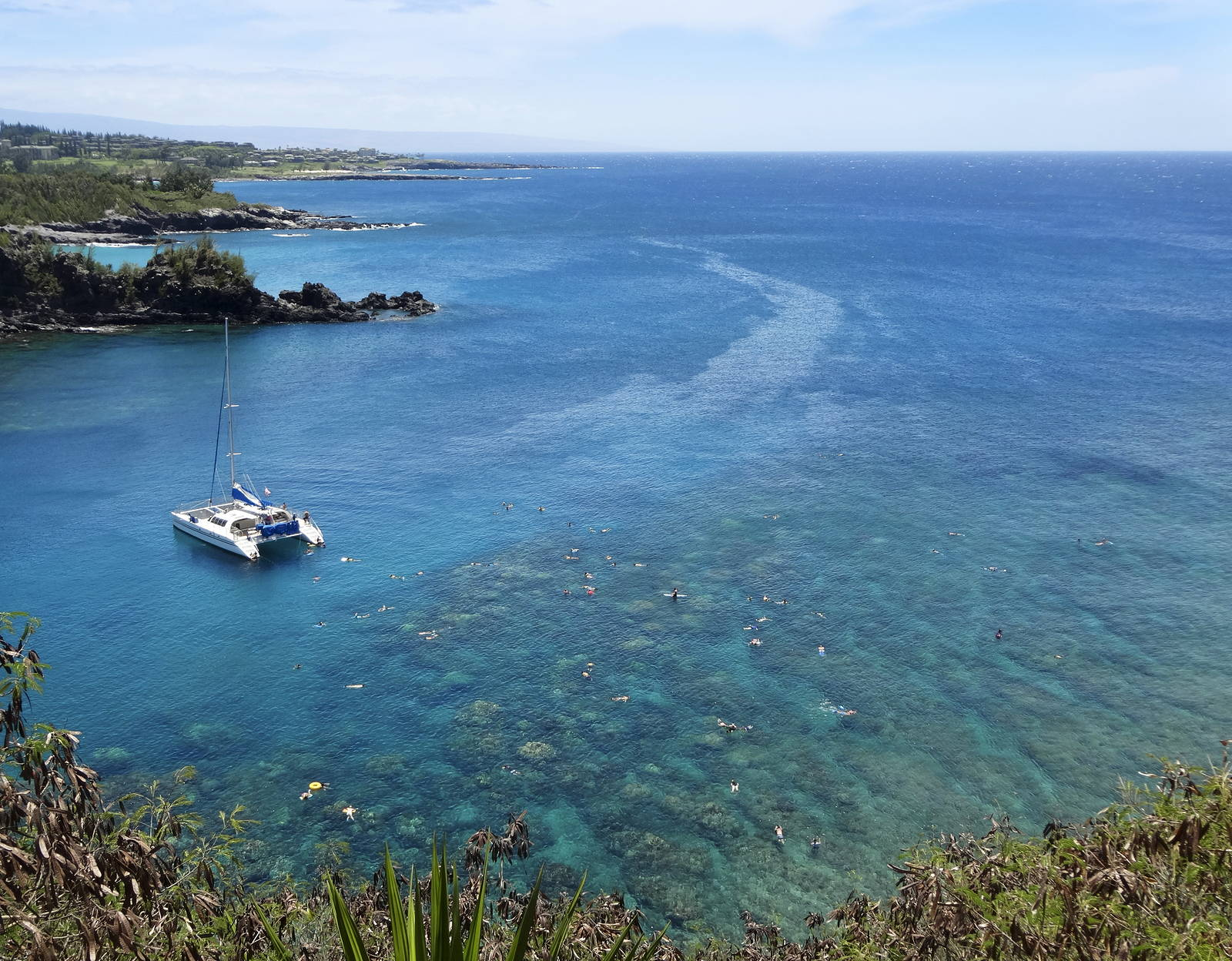 Warm tropical snorkeling tours