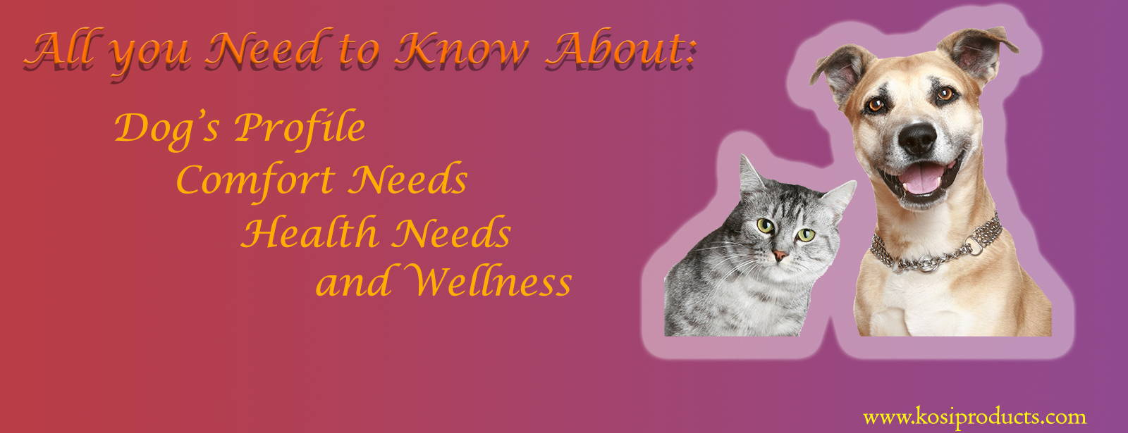ALL-YOU-NEED-KNOW-ABOUT-DOGS-PROFILES-COMFORT-HEALTH-WELLNESS-NEEDS