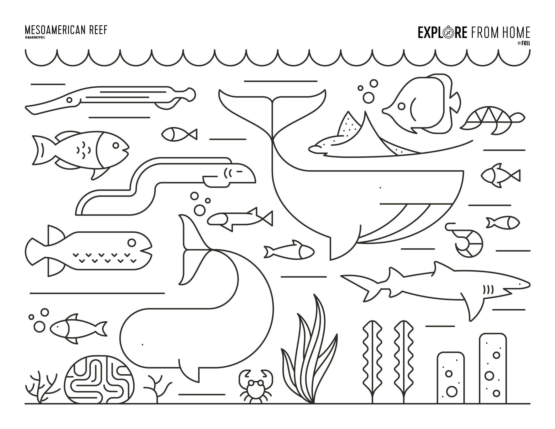 OCEAN - BIOMES AND LANDFORMS Coloring Page for Craft ... | 1800x2329
