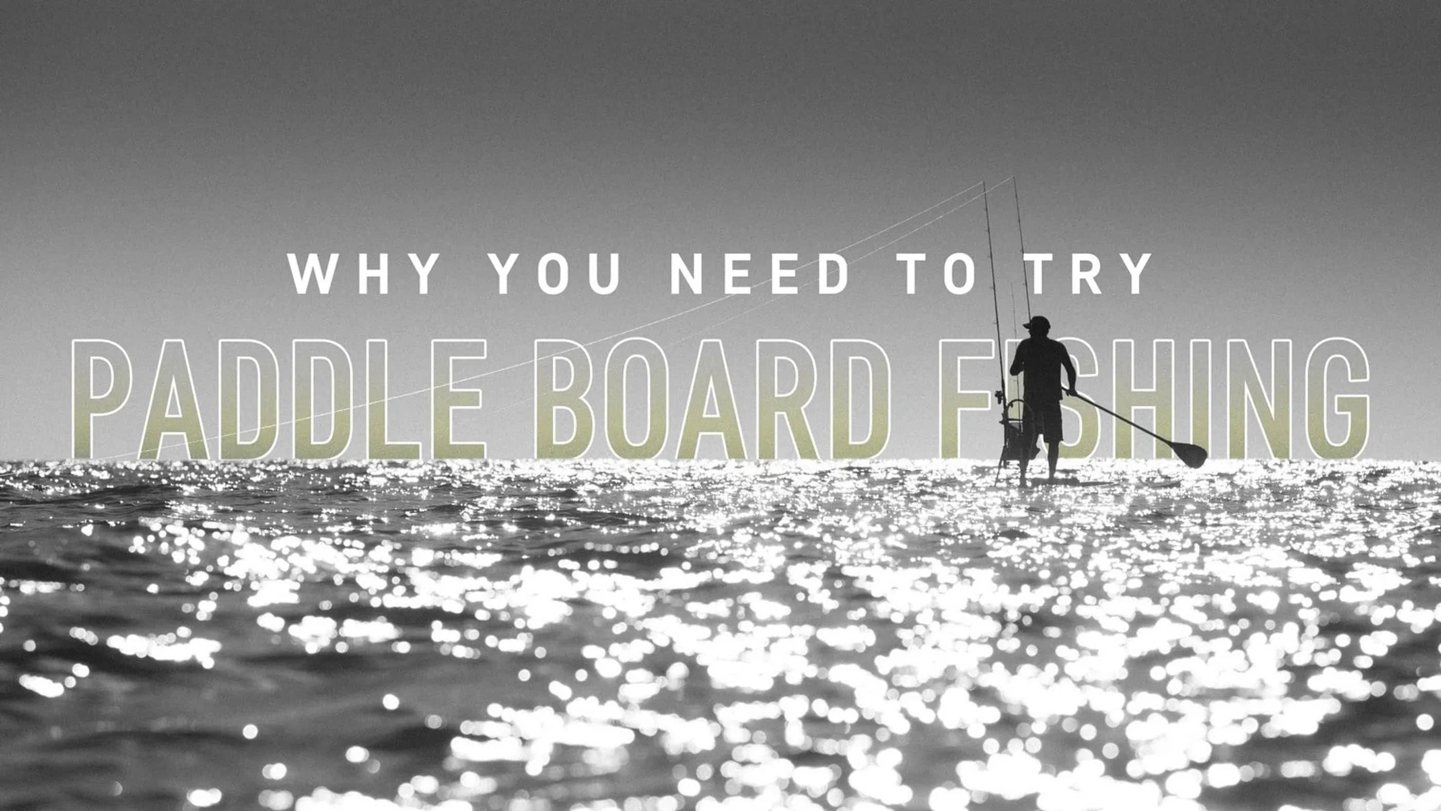 Why You Need to Try Paddle Board Fishing