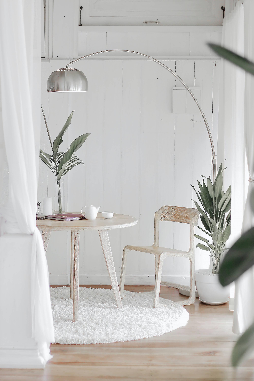 Marie Kondo y sus plantas