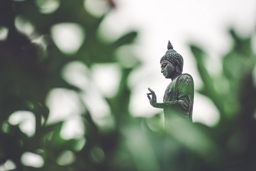 buddha-vegetarian