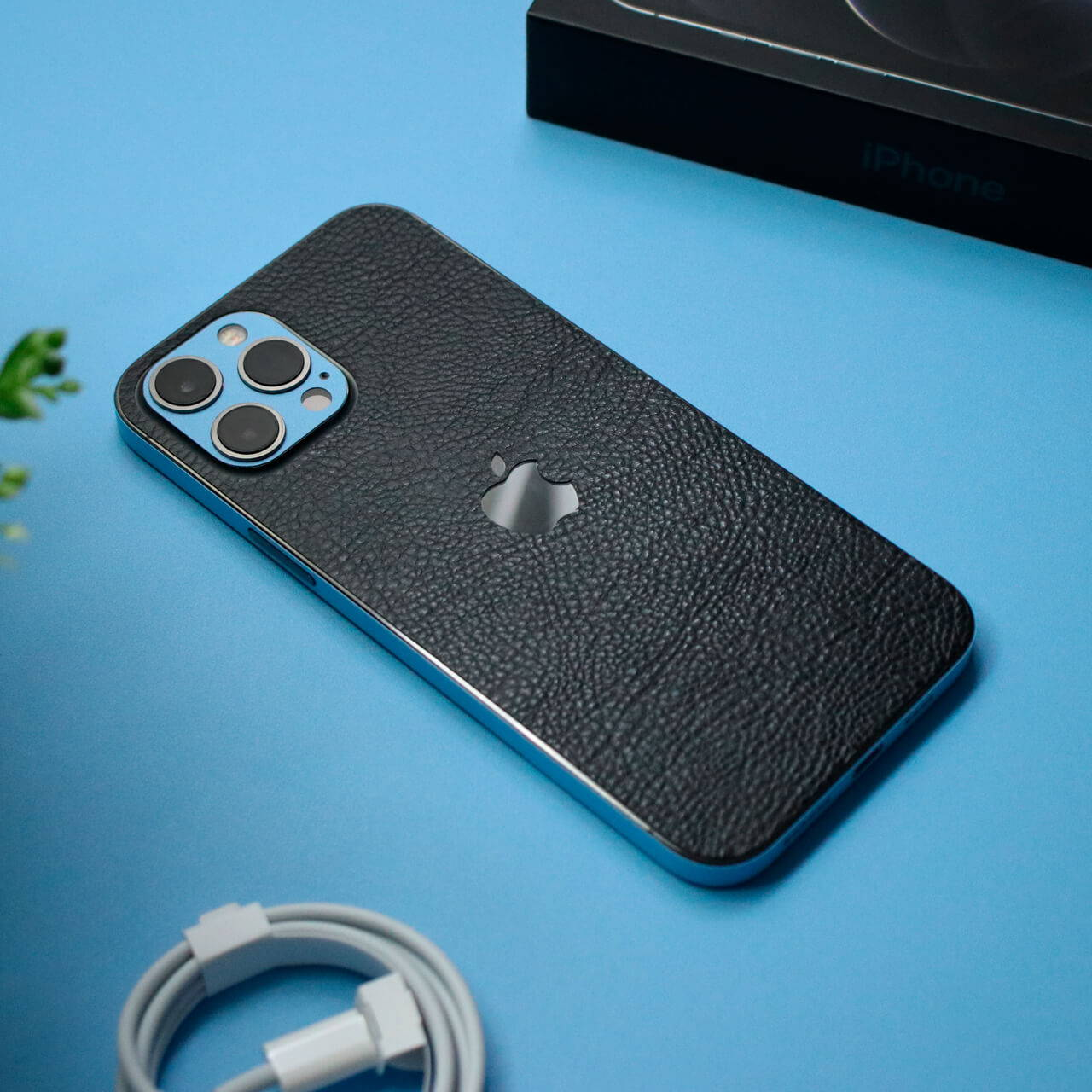 iPhone 12 Pro Max Black leather skins