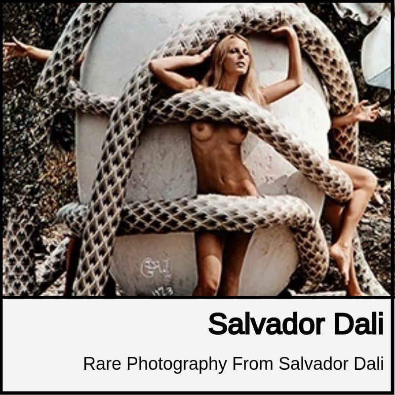 salvador dali photography