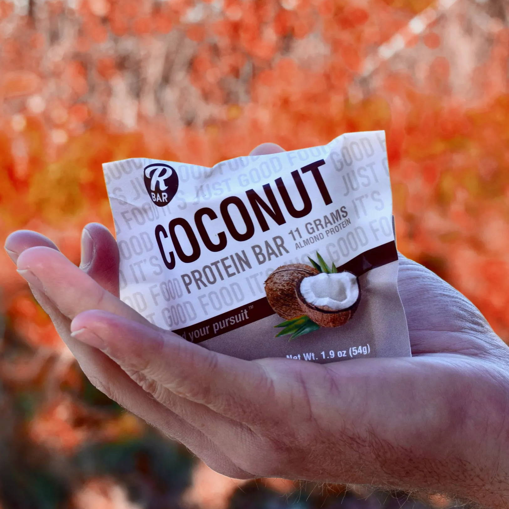 Coconut Almond Protein Bar