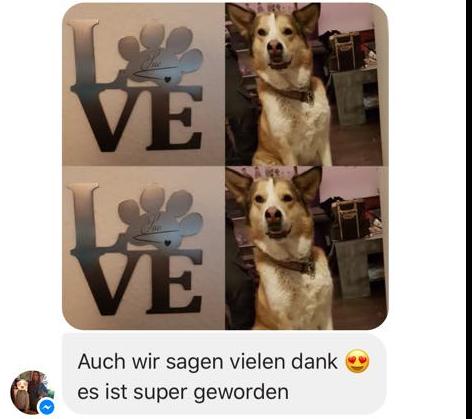 LOVE Schriftzug hergestellt aus hochwertigen gebürsteten Edelstahl, das O ist dargestellt als eine Hundepfote, darauf der Name des Hundes eingraviert, Hudnebild