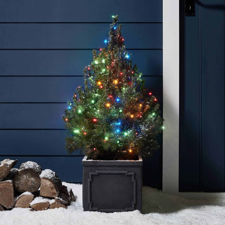 Bunte Lichterkette an kleinem Tannenbaum außen.