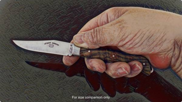 LE SAINT-BERNARD POCKET KNIFE held in an adult hand to show size perspective