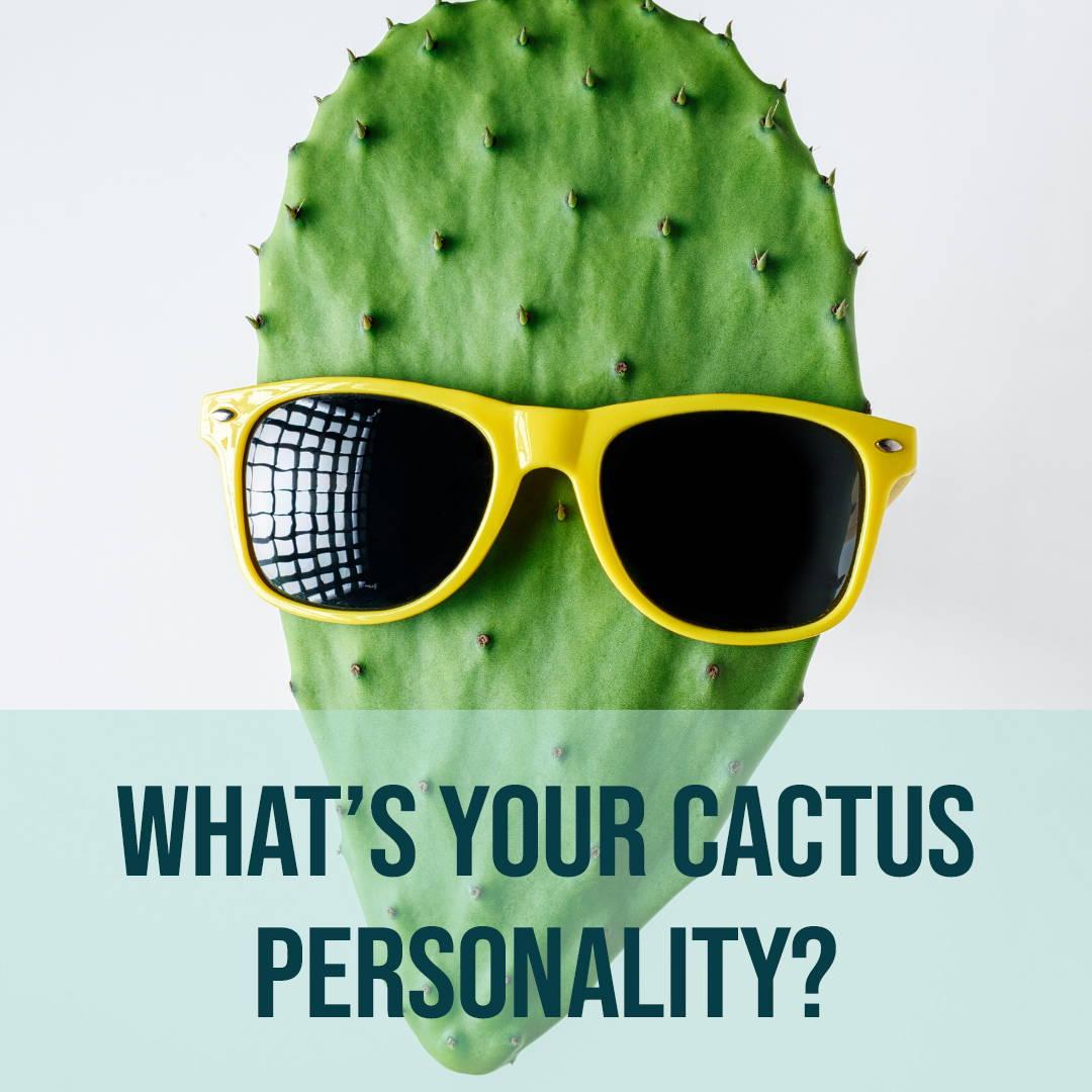 Cactus Personality Quiz