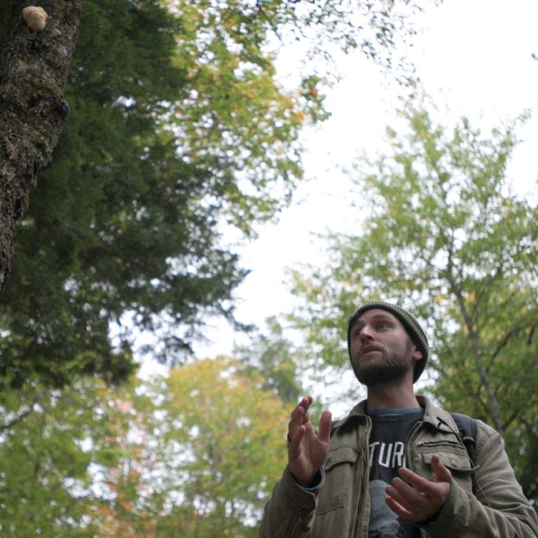 A person teaching a North Spore foraging class and a Lion's Mane mushroom growing on a tree