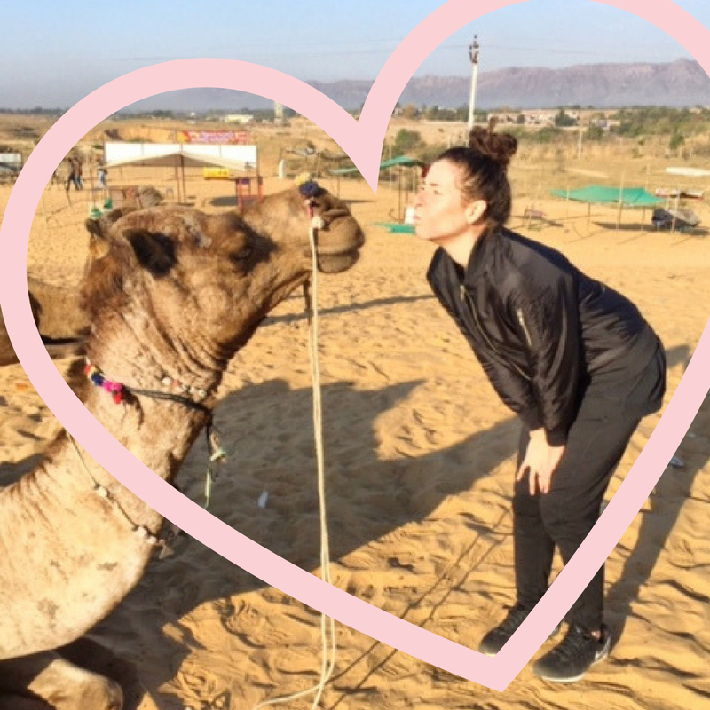 melanie disalvo kissing a camel in pushkar india