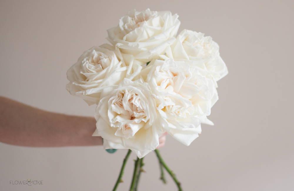 cream wedding palette