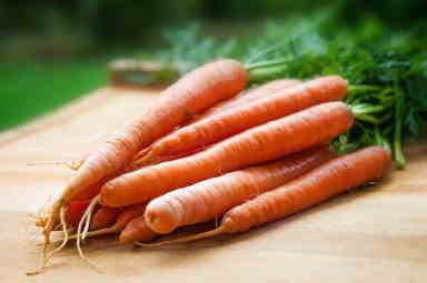 Carrot seed oil prevents and repairs sun damage in skin