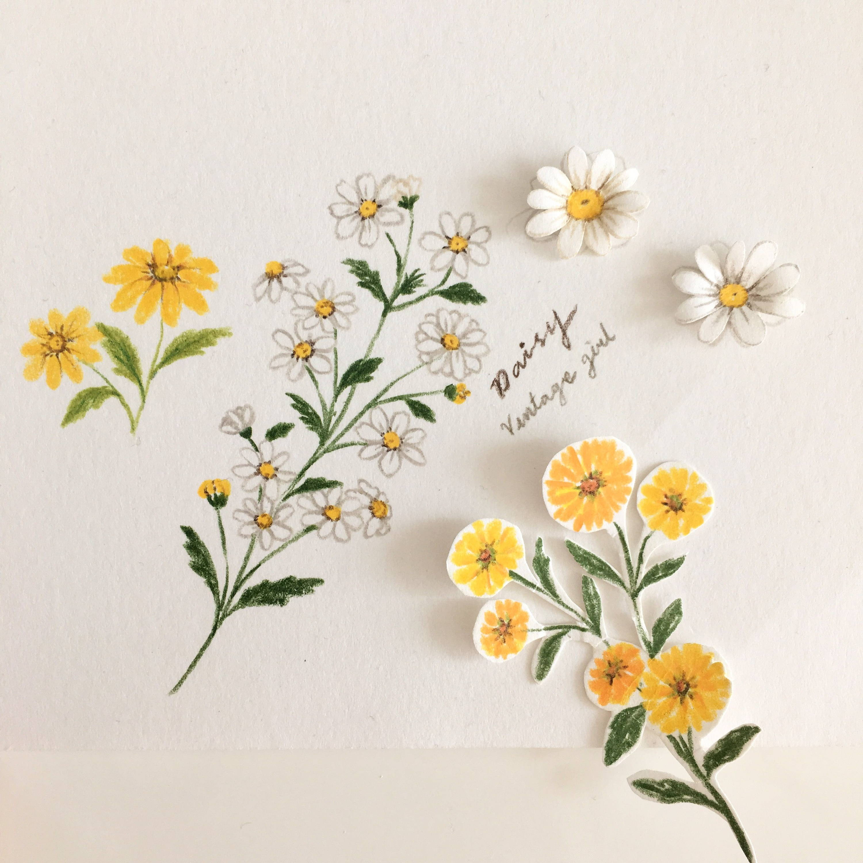 How To Draw Flowers Teasets And Food Colored Pencil Drawing Class Class101
