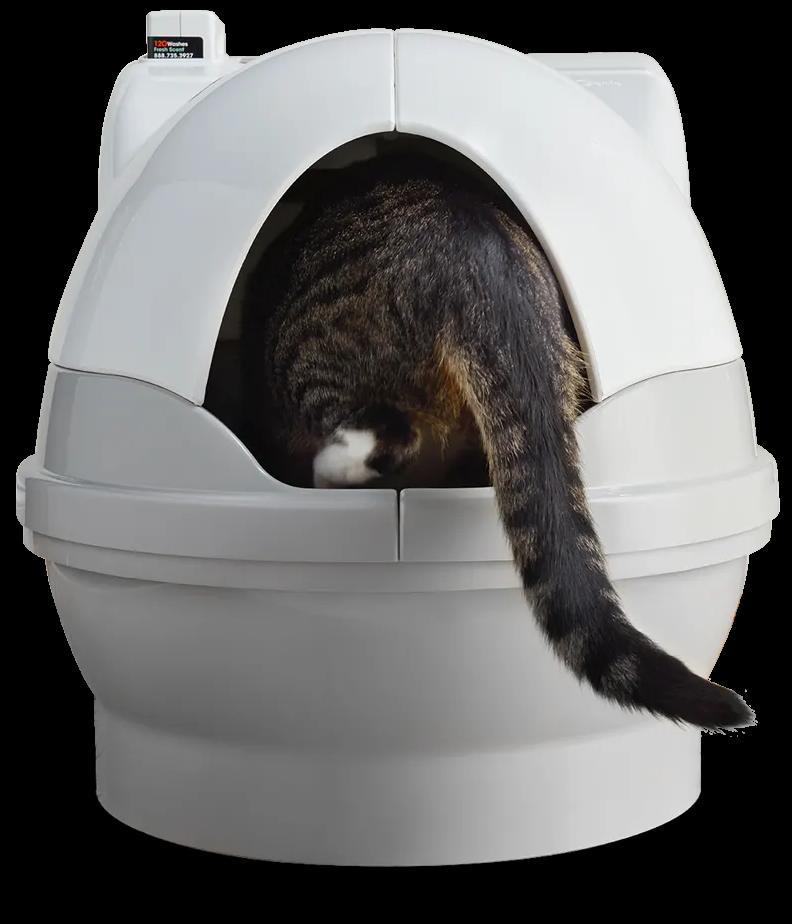 Cat climbing into CatGenie automatic litter box