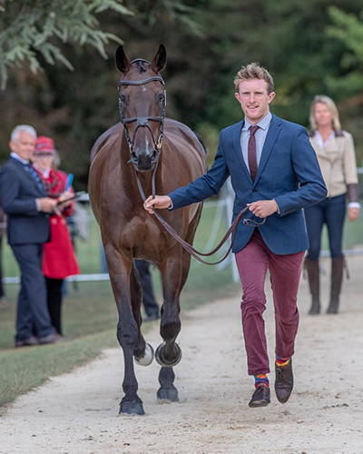Nick Lucey - 5* Eventer at a trot-up